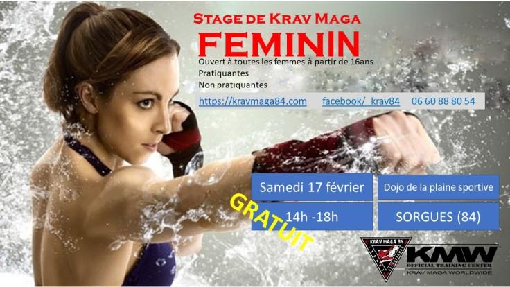 Stage de Krav Maga